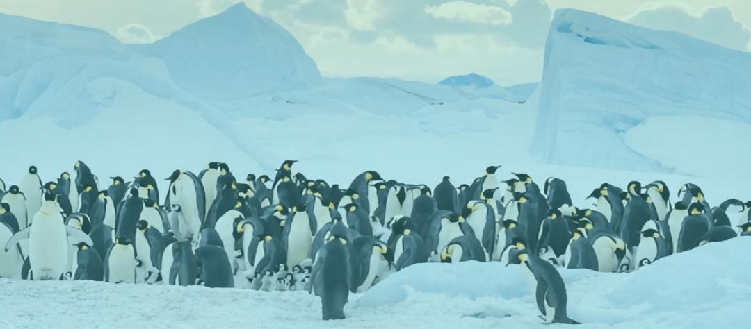 3 icebreakers pour dynamiser vos réunions